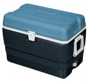 50 Qtz Cooler Box  | Igloo Maxcold - 5 Day Cooler